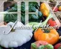 Planten-, Rozen- en Moestuinfestival Tuinen van Hex
