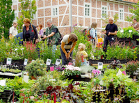 Pflanzenmarkt Kiekeberg