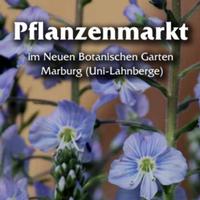 Pflanzenmarkt Marburg